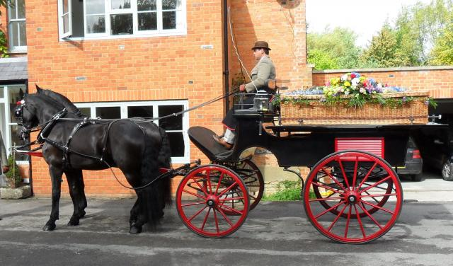 00000000000000000000000_Horse_Drawn_Flat_Bed_Funeral_Hearse_The_Ostler.jpg