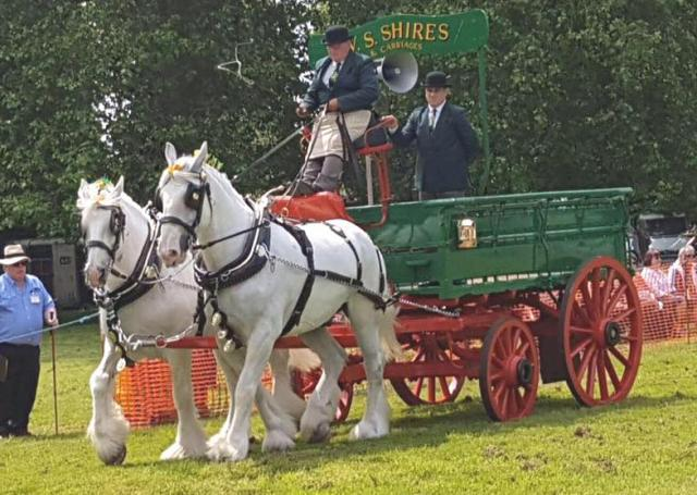 0001EGreen_Dray_white_Shires_June_2016_CROPPED.jpg