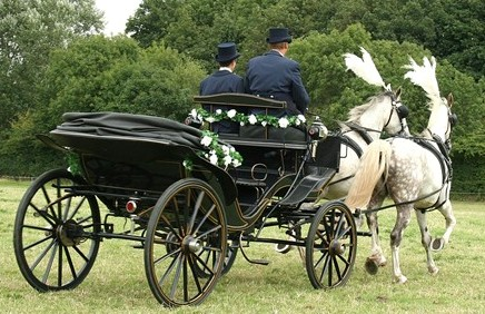 Blue Victoria Carriage.jpg