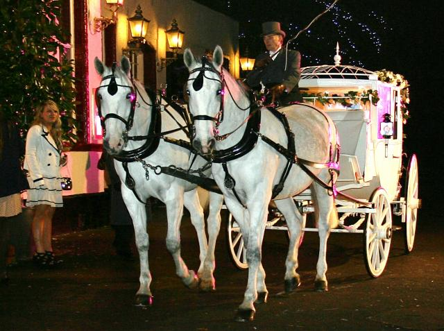 TOWIE Horse and Carriage.jpg